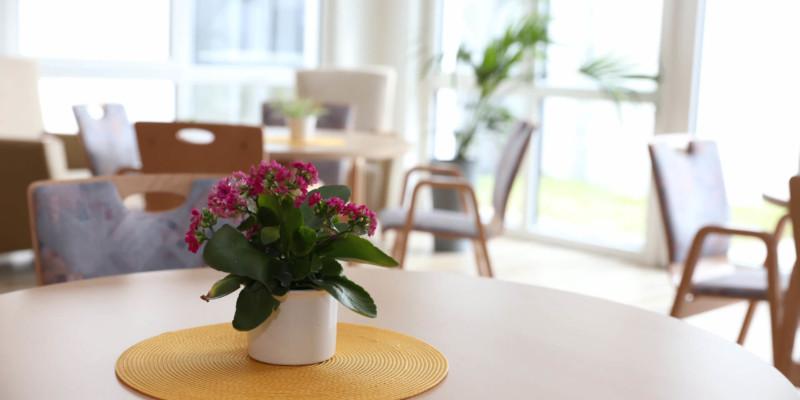 Tisch mit Topfpflanze
